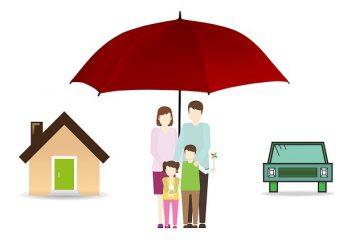 insurance-terminology